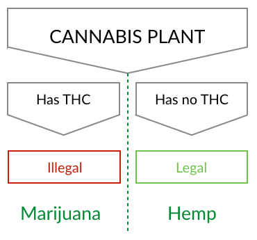Hemp Answers